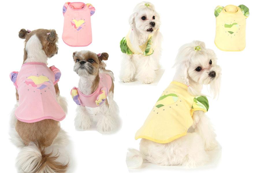 фотографии собак: